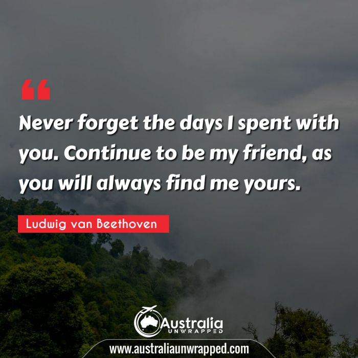 Never forget the days I spent with you. Continue to be my friend, as you will always find me yours.