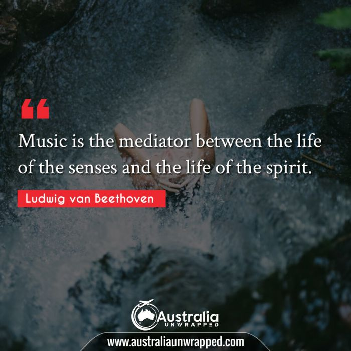 Music is the mediator between the life of the senses and the life of the spirit.