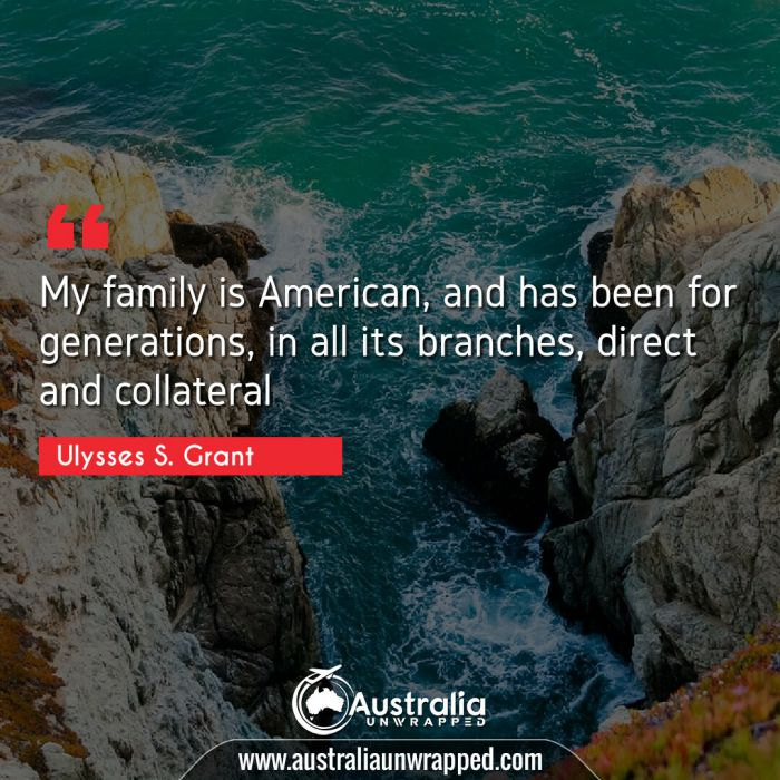 My family is American, and has been for generations, in all its branches, direct and collateral