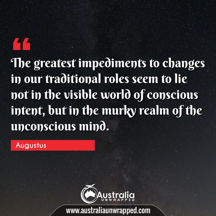 The greatest impediments to changes in our traditional roles seem to lie not in the visible world of conscious intent, but in the murky realm of the unconscious mind.
