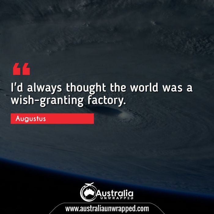 I'd always thought the world was a wish-granting factory.