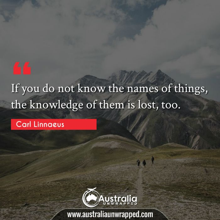 If you do not know the names of things, the knowledge of them is lost, too.
