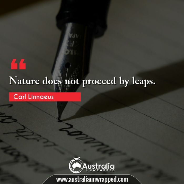 Nature does not proceed by leaps.