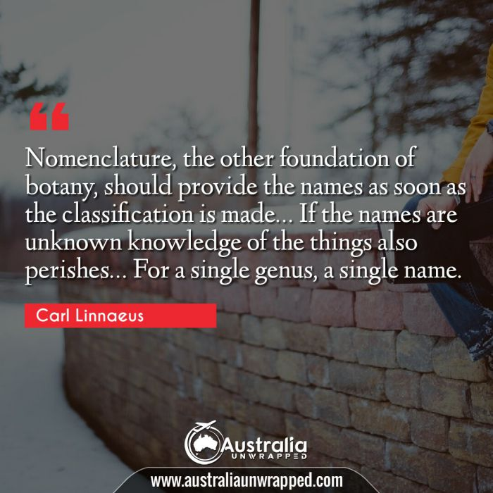 Nomenclature, the other foundation of botany, should provide the names as soon as the classification is made… If the names are unknown knowledge of the things also perishes… For a single genus, a single name.