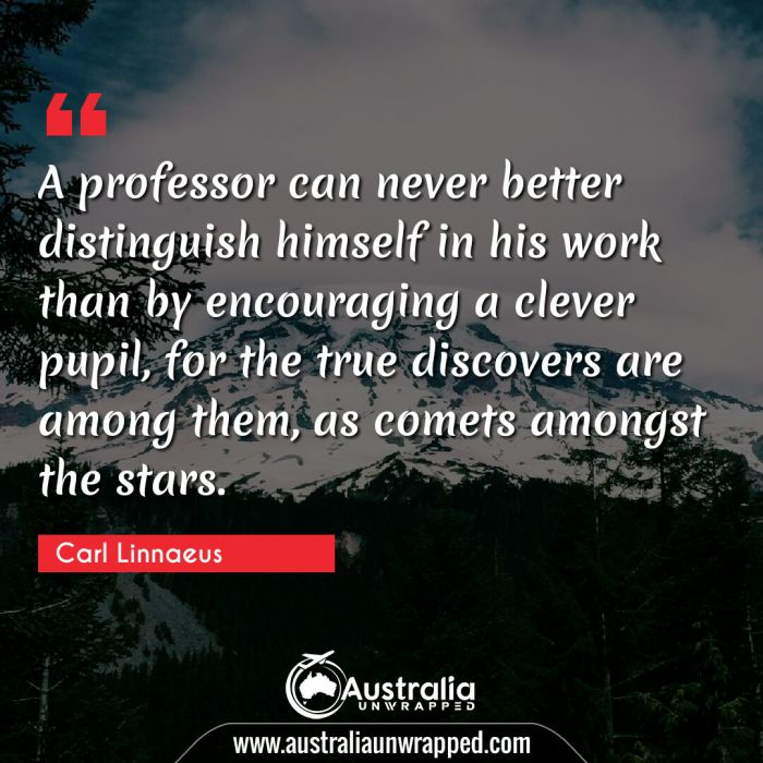 A professor can never better distinguish himself in his work than by encouraging a clever pupil, for the true discovers are among them, as comets amongst the stars.