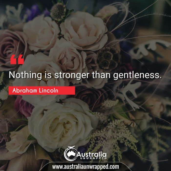 Nothing is stronger than gentleness.