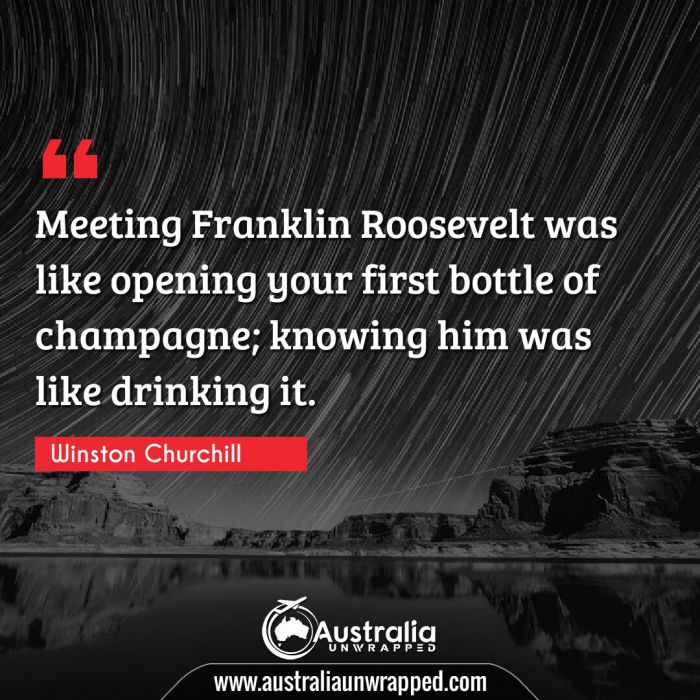 Meeting Franklin Roosevelt was like opening your first bottle of champagne; knowing him was like drinking it.