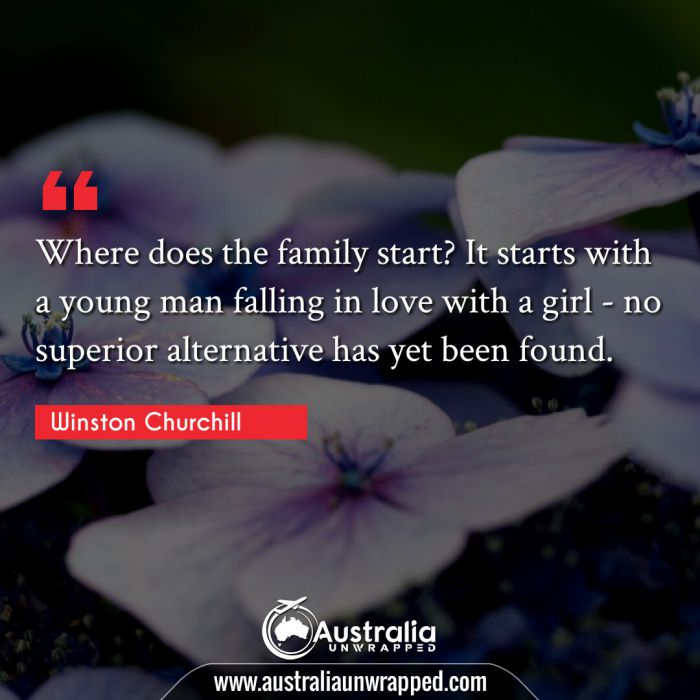 Where does the family start? It starts with a young man falling in love with a girl - no superior alternative has yet been found.