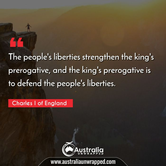 The people's liberties strengthen the king's prerogative, and the king's prerogative is to defend the people's liberties.