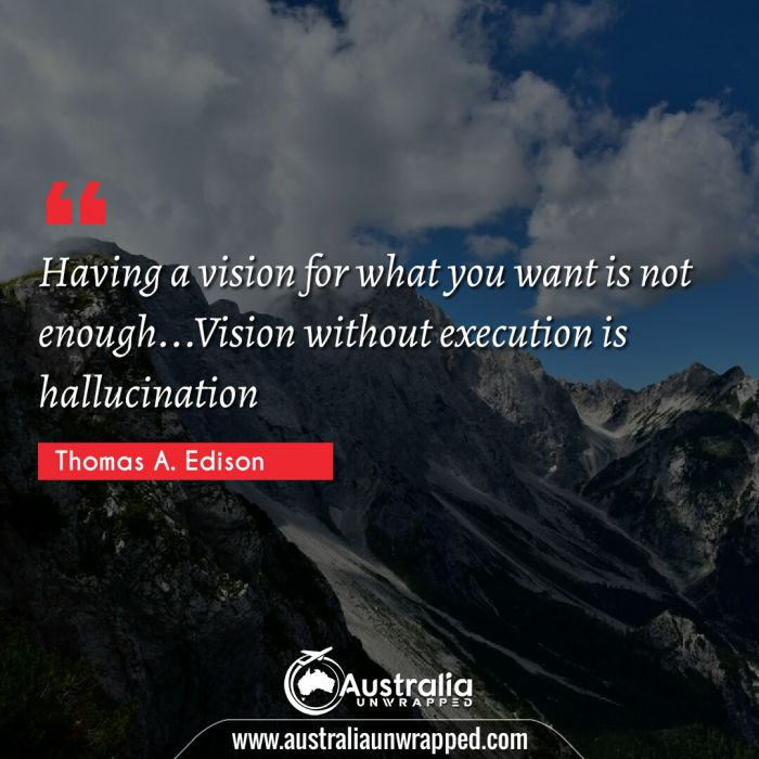 Having a vision for what you want is not enough…Vision without execution is hallucination