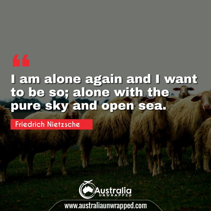 I am alone again and I want to be so; alone with the pure sky and open sea.