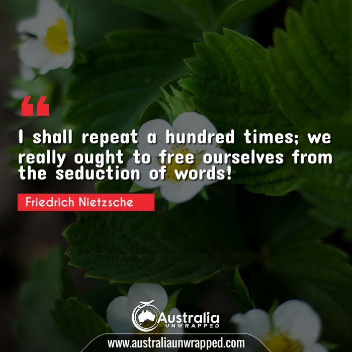 I shall repeat a hundred times; we really ought to free ourselves from the seduction of words!
