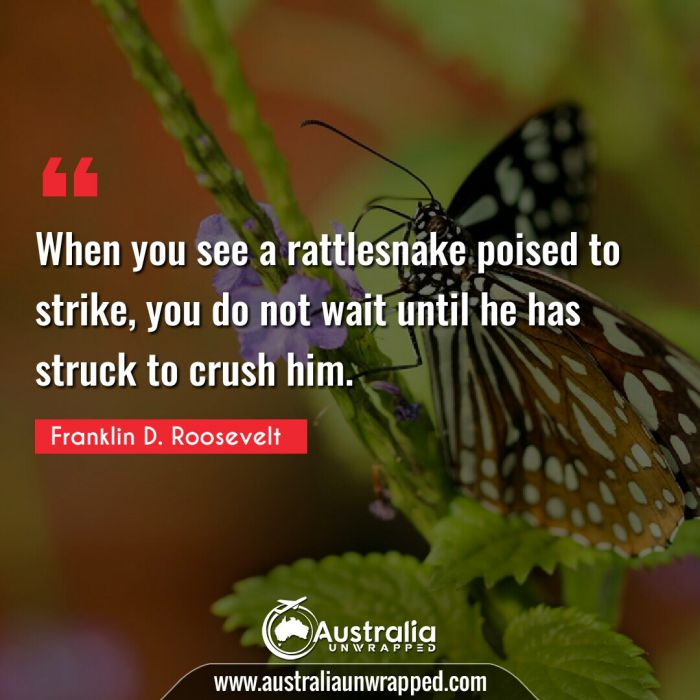 When you see a rattlesnake poised to strike, you do not wait until he has struck to crush him.