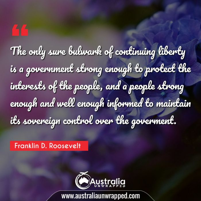 The only sure bulwark of continuing liberty is a government strong enough to protect the interests of the people, and a people strong enough and well enough informed to maintain its sovereign control over the goverment.