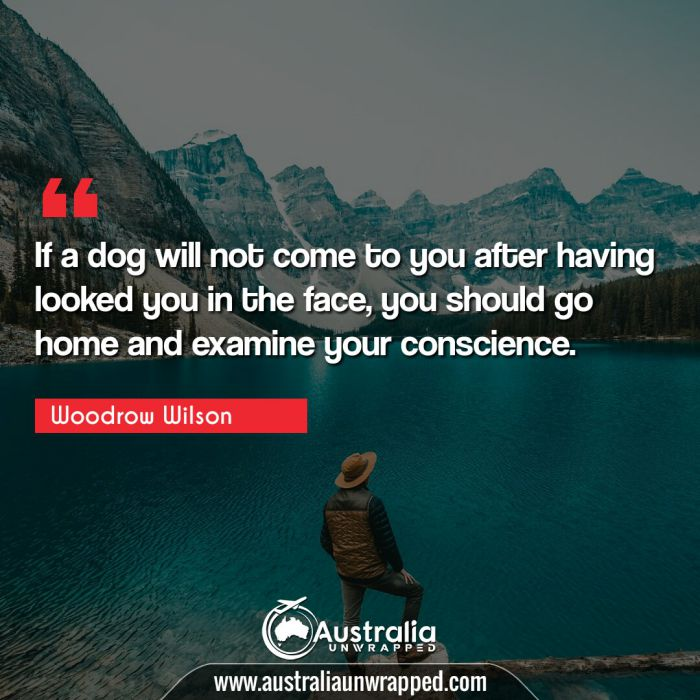 If a dog will not come to you after having looked you in the face, you should go home and examine your conscience.