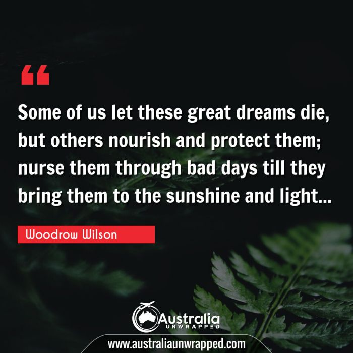 Some of us let these great dreams die, but others nourish and protect them; nurse them through bad days till they bring them to the sunshine and light…