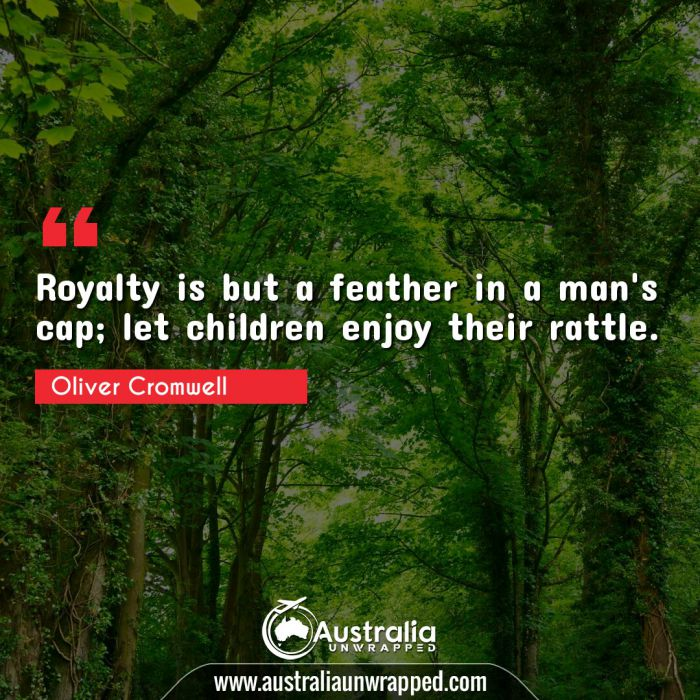 Royalty is but a feather in a man's cap; let children enjoy their rattle.