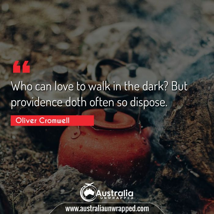 Who can love to walk in the dark? But providence doth often so dispose.