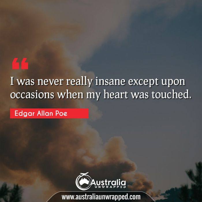 I was never really insane except upon occasions when my heart was touched.