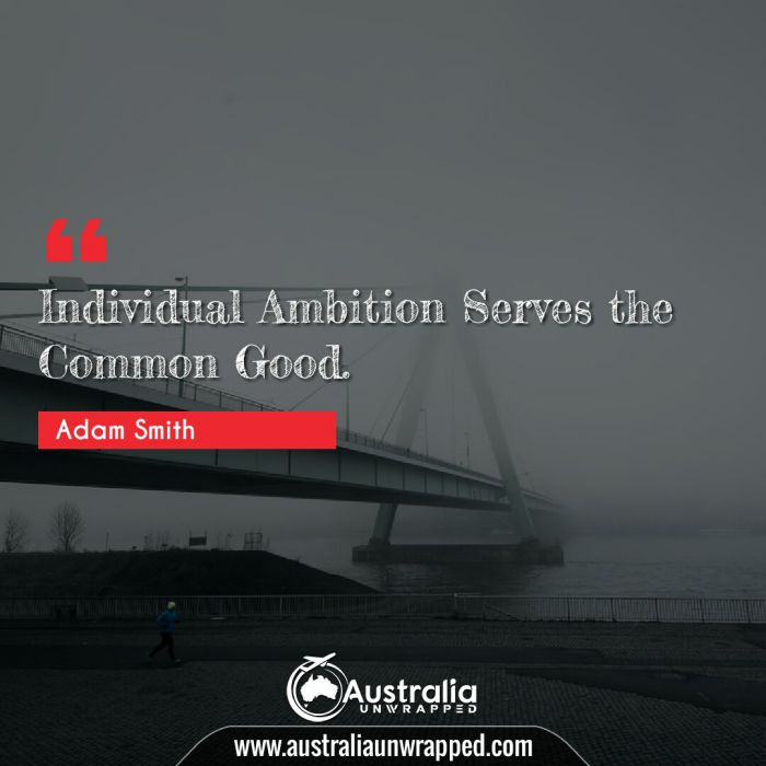 Individual Ambition Serves the Common Good.