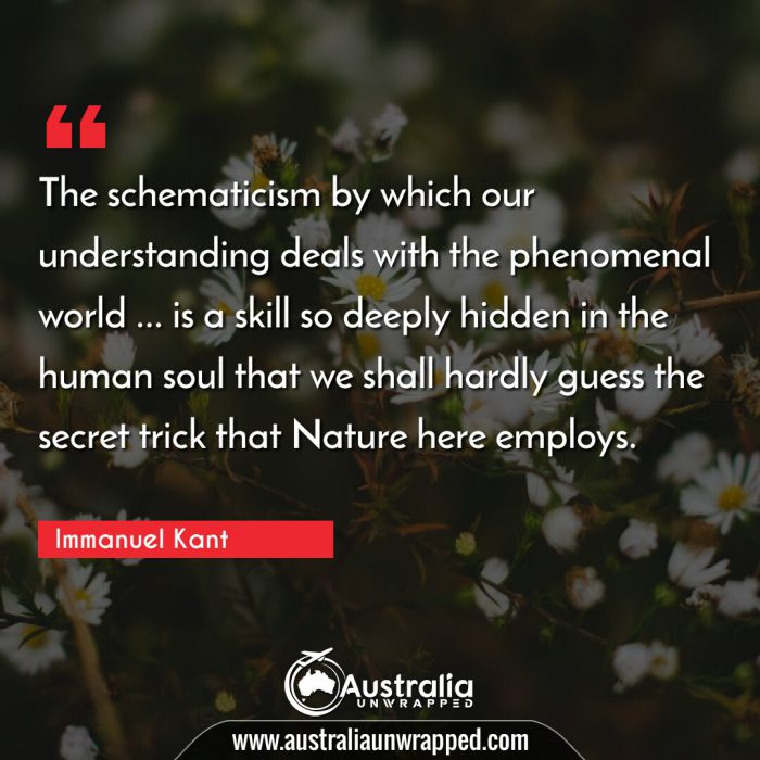 The schematicism by which our understanding deals with the phenomenal world … is a skill so deeply hidden in the human soul that we shall hardly guess the secret trick that Nature here employs.