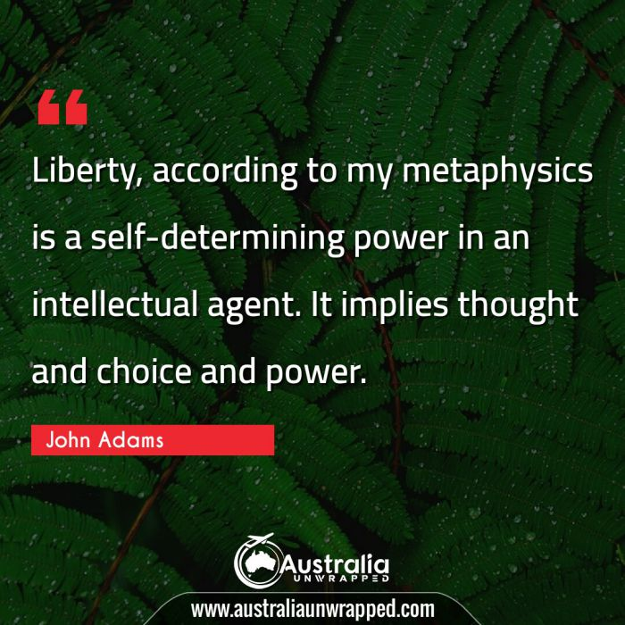 Liberty, according to my metaphysics is a self-determining power in an intellectual agent. It implies thought and choice and power.