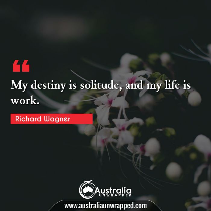 My destiny is solitude, and my life is work.