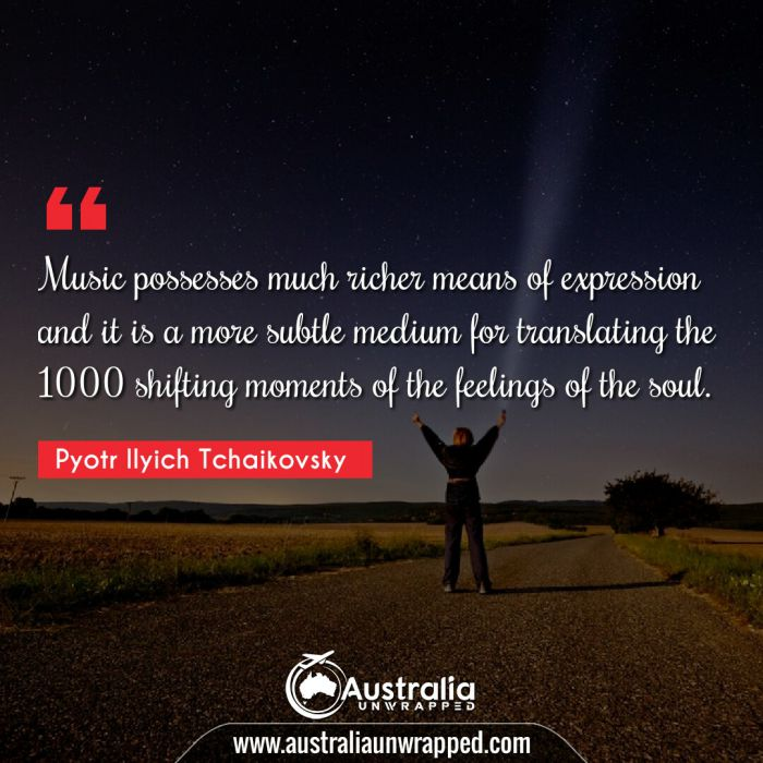 Music possesses much richer means of expression and it is a more subtle medium for translating the 1000 shifting moments of the feelings of the soul.
