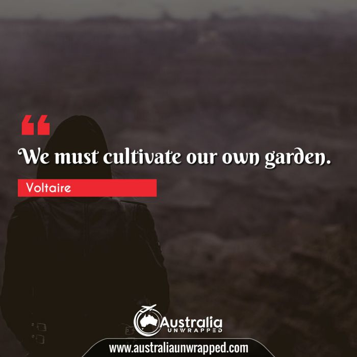 We must cultivate our own garden.