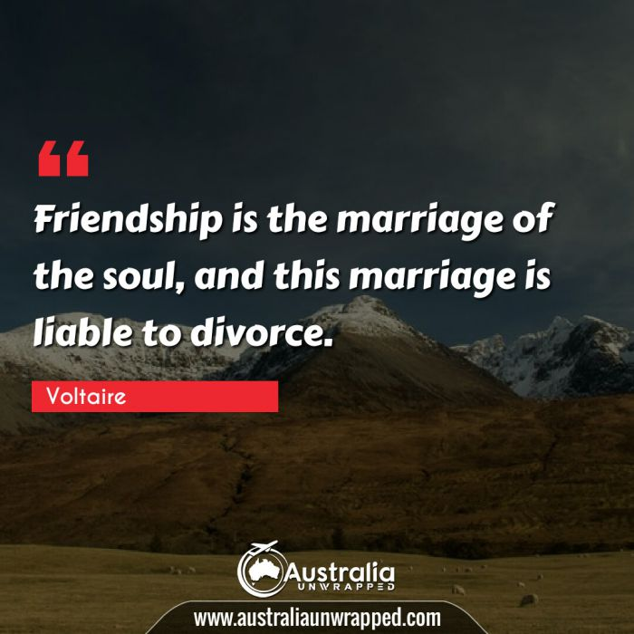 Friendship is the marriage of the soul, and this marriage is liable to divorce.