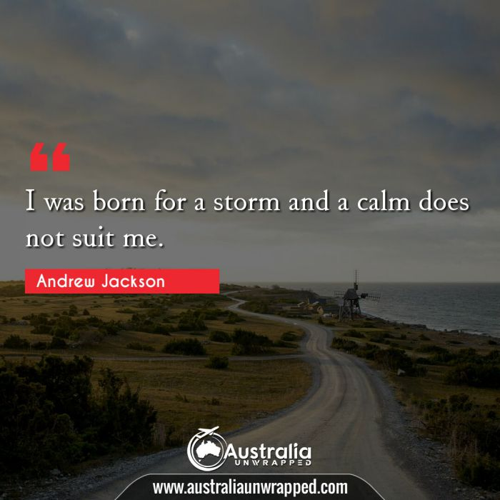 I was born for a storm and a calm does not suit me.