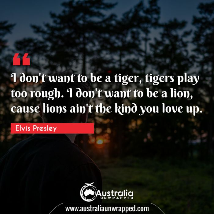 I don't want to be a tiger, tigers play too rough. I don't want to be a lion, cause lions ain't the kind you love up.