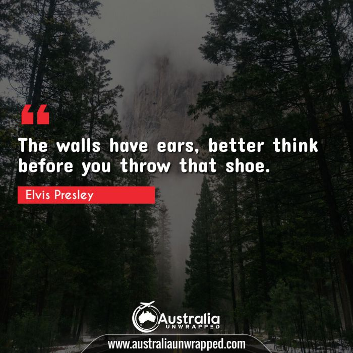 The walls have ears, better think before you throw that shoe.