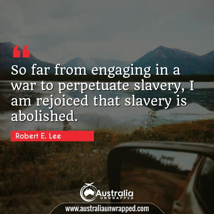 So far from engaging in a war to perpetuate slavery, I am rejoiced that slavery is abolished.