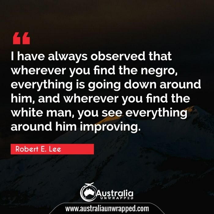 I have always observed that wherever you find the negro, everything is going down around him, and wherever you find the white man, you see everything around him improving.
