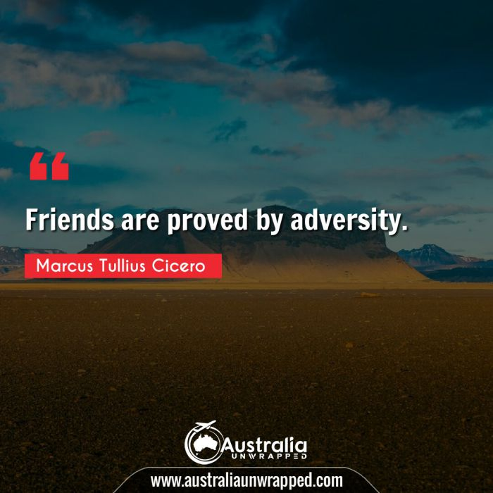 Friends are proved by adversity.