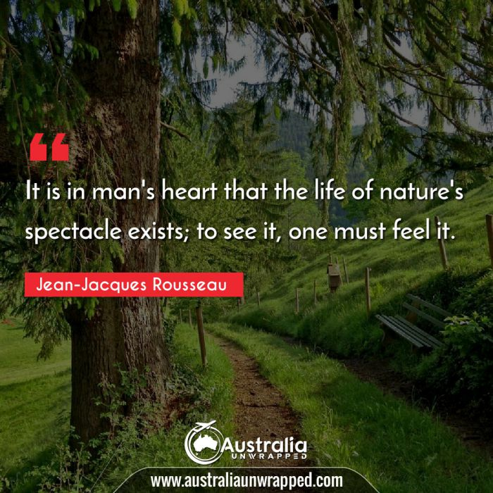 It is in man's heart that the life of nature's spectacle exists; to see it, one must feel it.