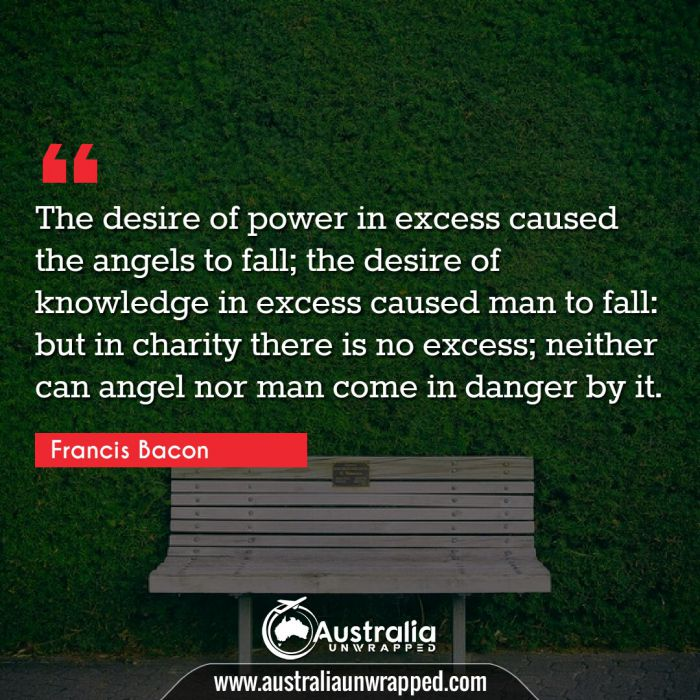 The desire of power in excess caused the angels to fall; the desire of knowledge in excess caused man to fall: but in charity there is no excess; neither can angel nor man come in danger by it.