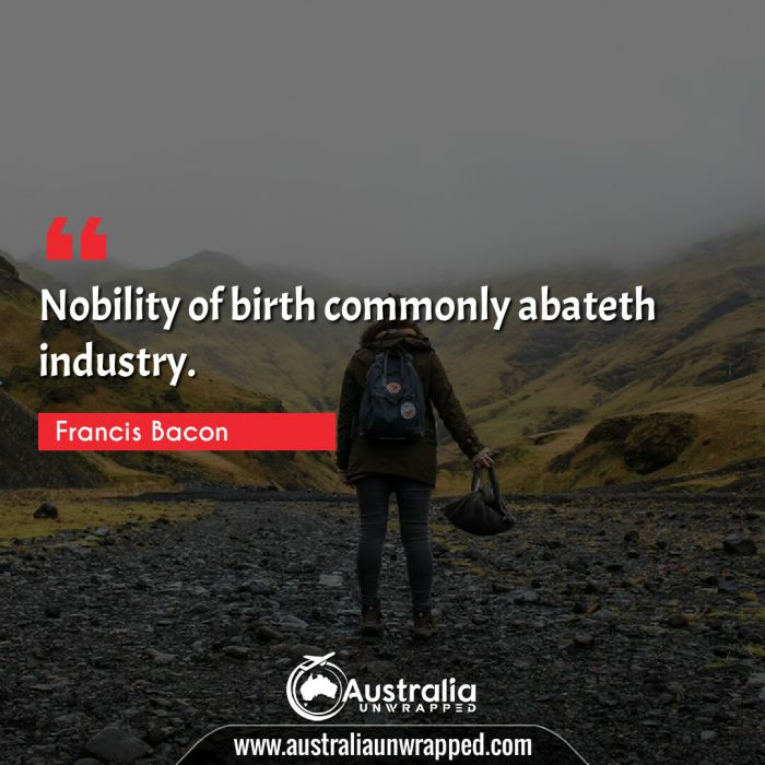 Nobility of birth commonly abateth industry.