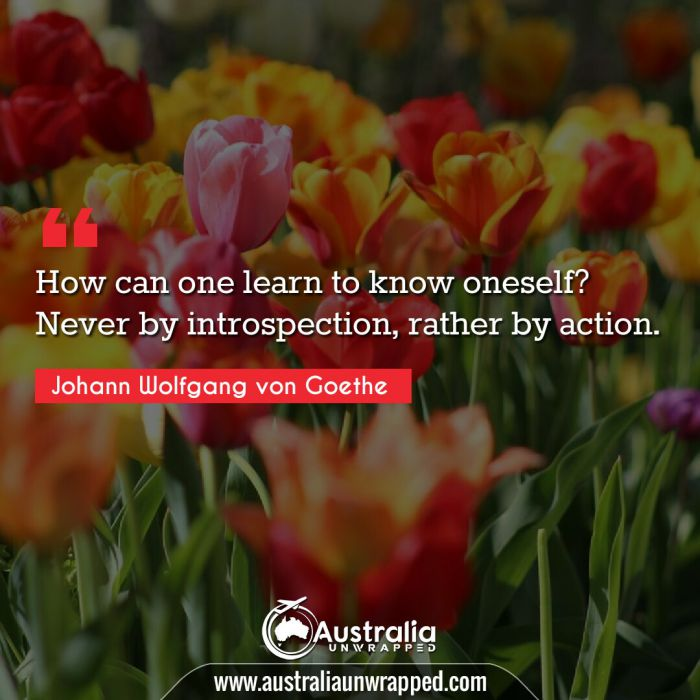 How can one learn to know oneself? Never by introspection, rather by action.