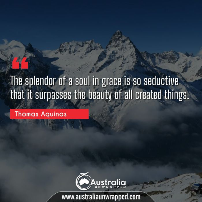 The splendor of a soul in grace is so seductive that it surpasses the beauty of all created things.