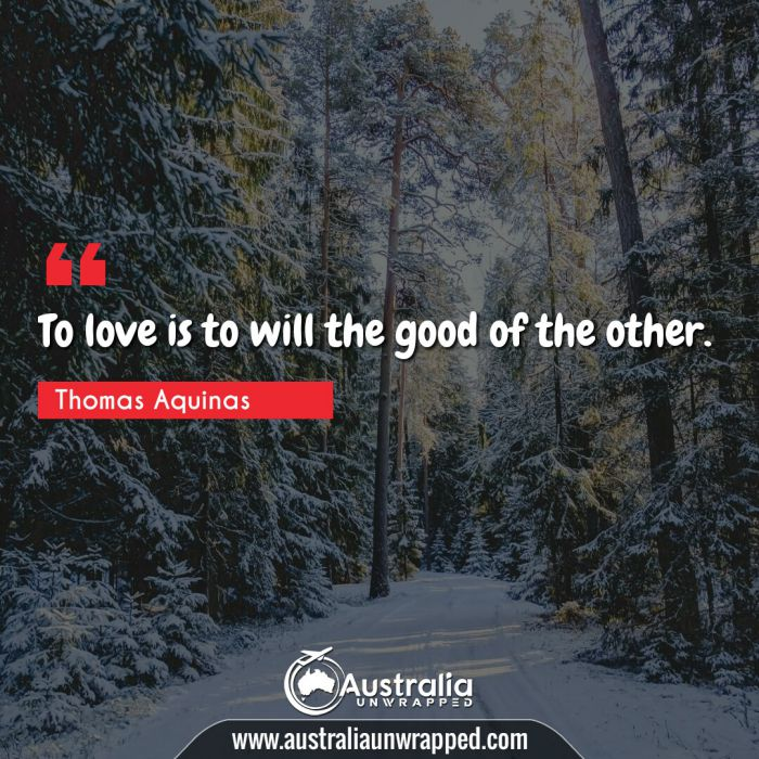 To love is to will the good of the other.