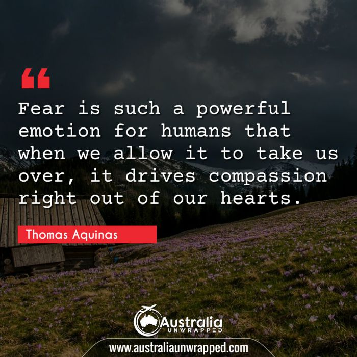 Fear is such a powerful emotion for humans that when we allow it to take us over, it drives compassion right out of our hearts.