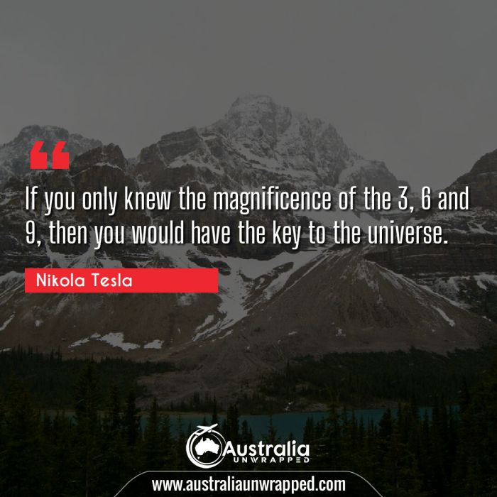 If you only knew the magnificence of the 3, 6 and 9, then you would have the key to the universe.