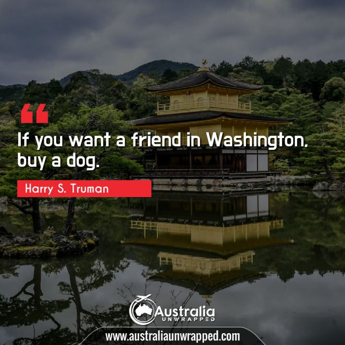 If you want a friend in Washington, buy a dog.