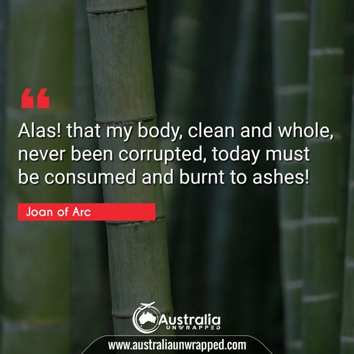 Alas! that my body, clean and whole, never been corrupted, today must be consumed and burnt to ashes!