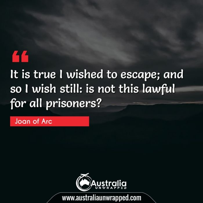 It is true I wished to escape; and so I wish still: is not this lawful for all prisoners?