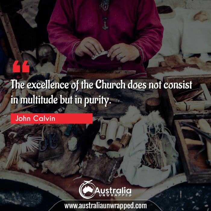 The excellence of the Church does not consist in multitude but in purity.