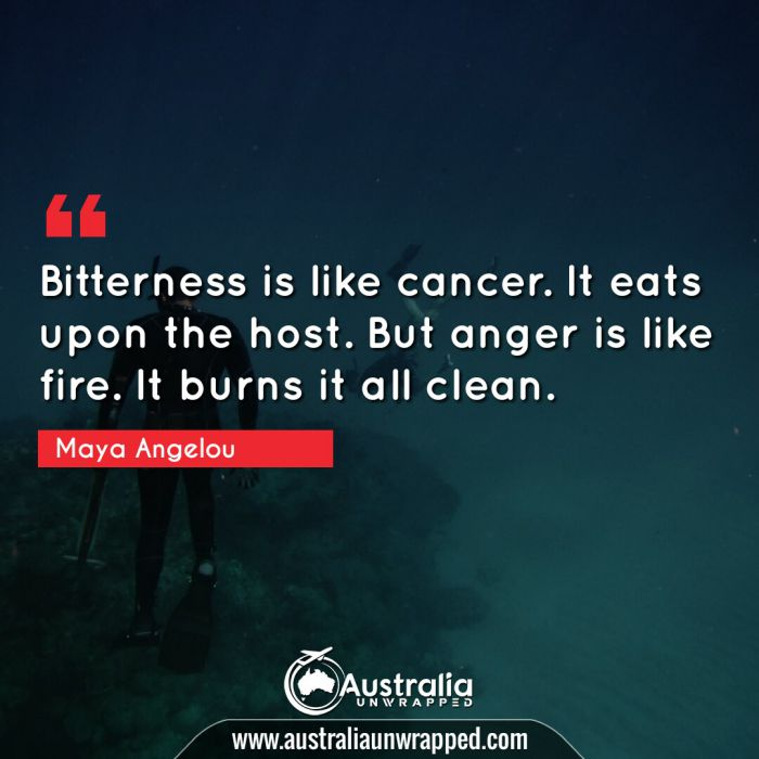 Bitterness is like cancer. It eats upon the host. But anger is like fire. It burns it all clean.