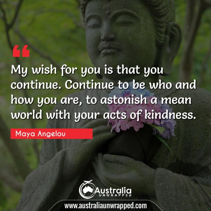 My wish for you is that you continue. Continue to be who and how you are, to astonish a mean world with your acts of kindness.